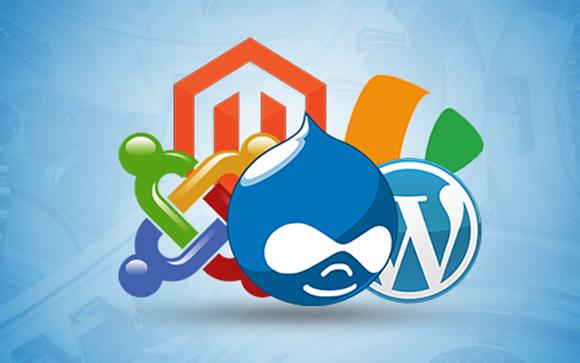 CMS Web Development Company Delhi, India